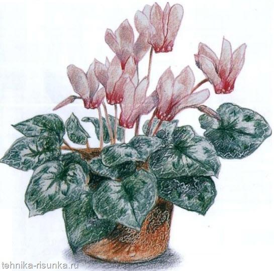 Рисунок цветочной вазы