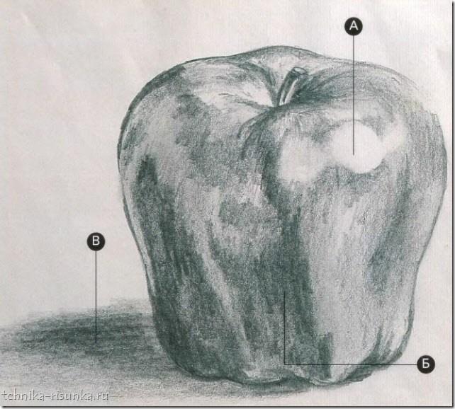 готовый рисунок яблока