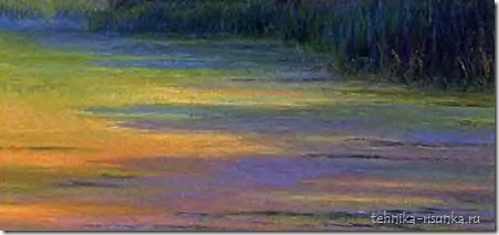 тени на поляне