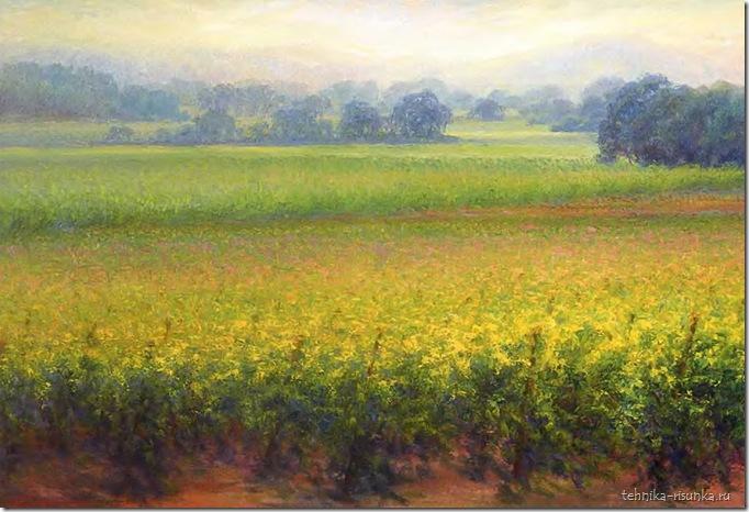 рисунок виноградников