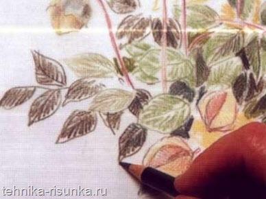 Тон листьев
